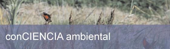encabezado del Boletin digital conCiencia Ambiental
