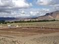 Feedlot en plena estepa patagónica (Pablo Tittonell)