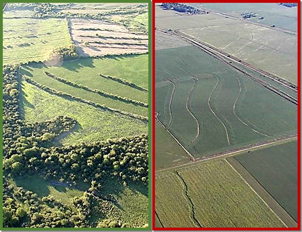 Estructuras de paisajes entrerrianos